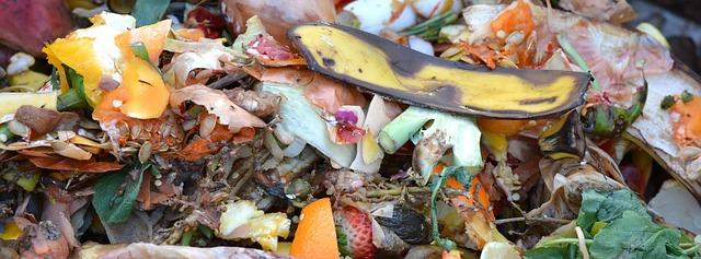 kompost ze zbytků
