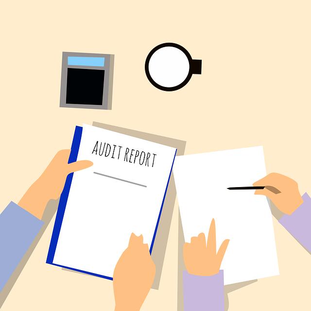 audit a finanční poradce.png